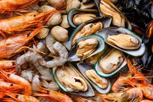 El marisco puede ser nuestro amigo || | Farmacia Internacional
